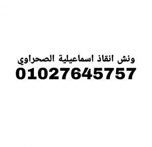 ونش انقاذ اسماعيلية الصحراوي